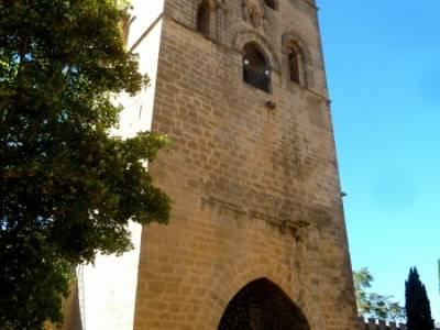 Hayedos Rioja Alavesa- Sierra Cantabria- Toloño;sierra de cabrera canto cochino la pedriza